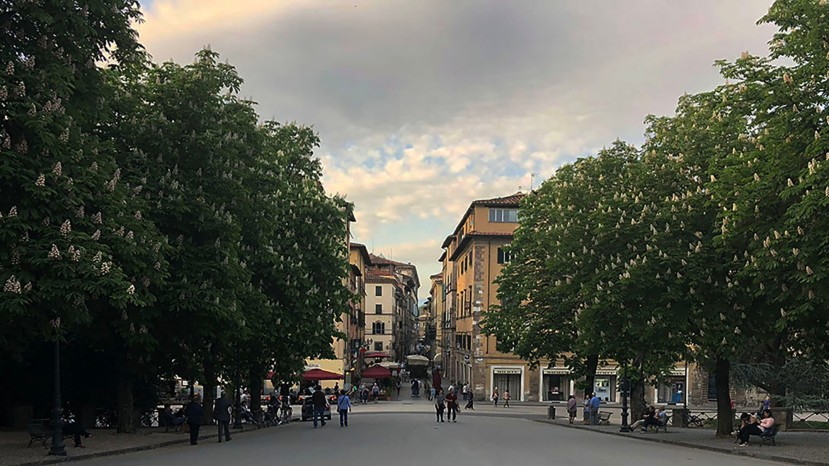 The surprising gem of historicLucca