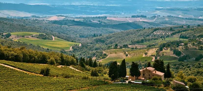 Tuscan Wine